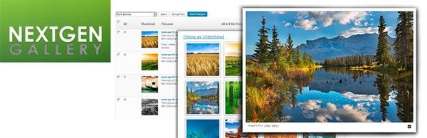 plugins wordpress populares